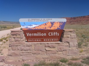 Vermilion Cliffs National Monument, home of the Arizona release site for condors.  Photo by Eric Weis.